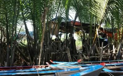 The Four Islands Mekong Day Tour – Vietnam