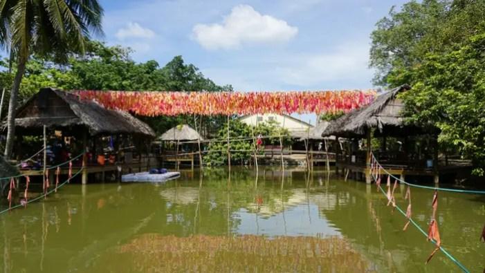 Toroise Island on the Mekong