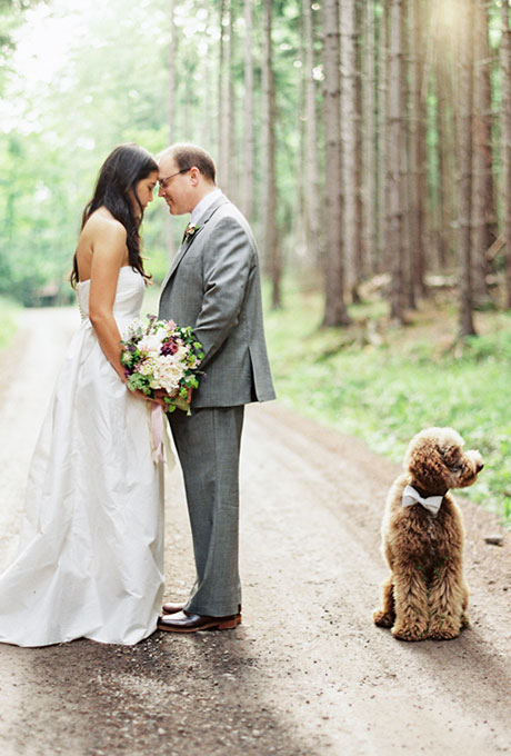 Dog in Bow Tie at Wedding - Fairly Southern