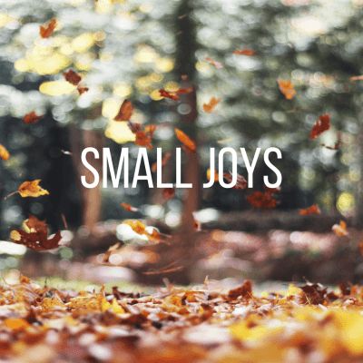 Small Joys: Volume 13