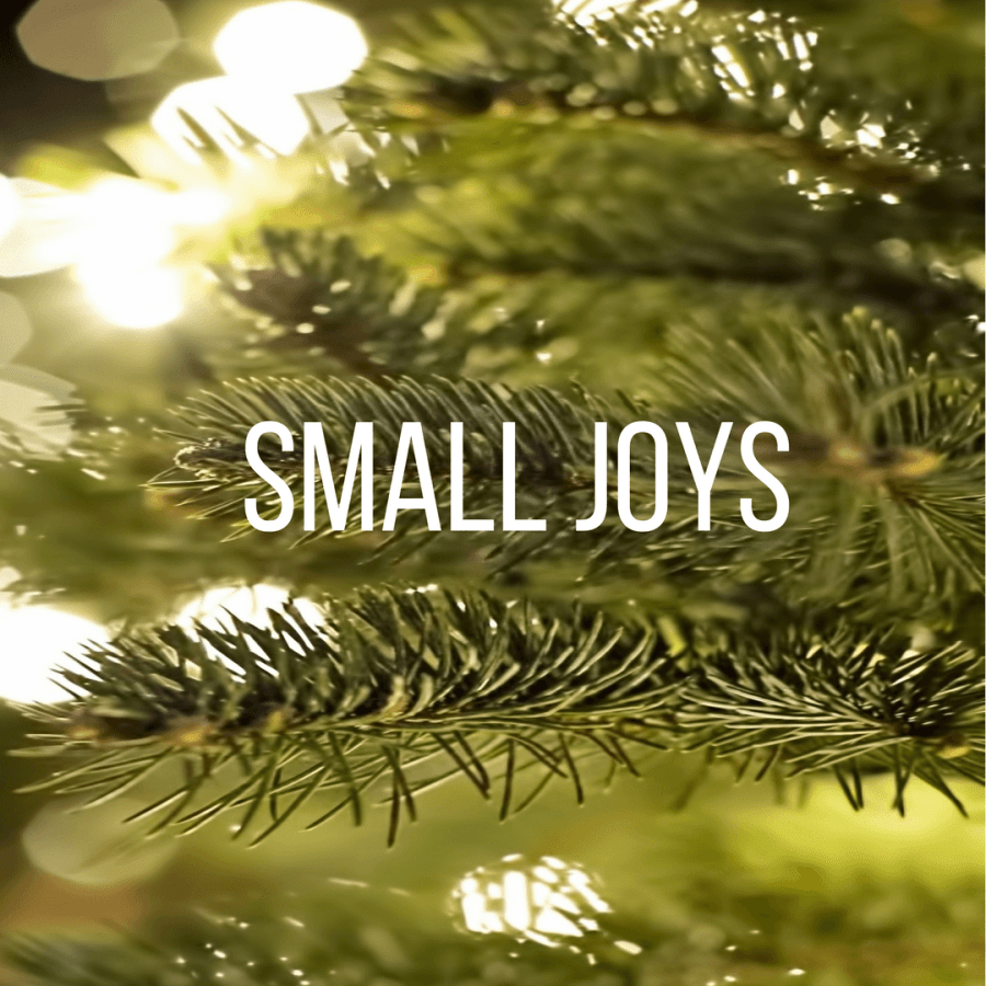 Small Joys: Volume 23