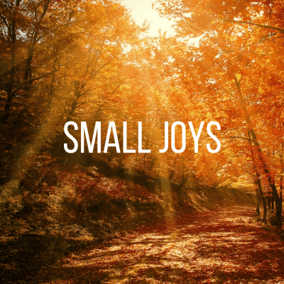 Small Joys: Volume 14