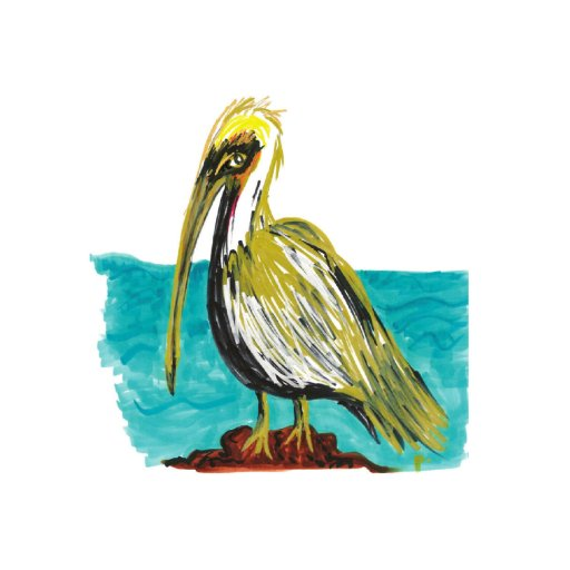 Majestic Pelican painting by sweetp.design | Fairly Southern