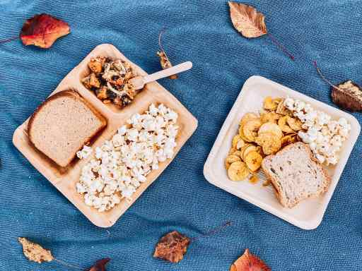 How to Have a SellSage Compostable Palm Leaf Plates - Zero Waste Pandemic Picnic | Fairly Southern