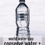 World Water Day: Conserve Water + Ditch Bottled Water. Water Isn't Trash, but Paying 600% More for a Bottle Definitely Is! | Fairly Southern