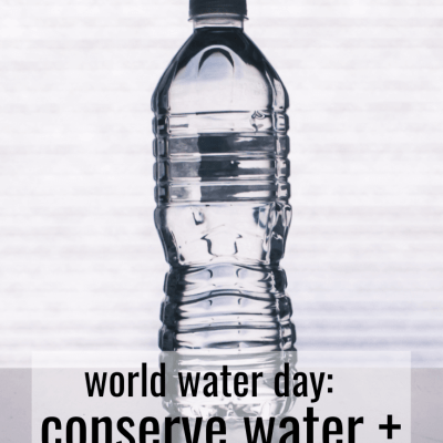 Water Isn't Trash, But Paying 600% More for a Bottle Definitely Is