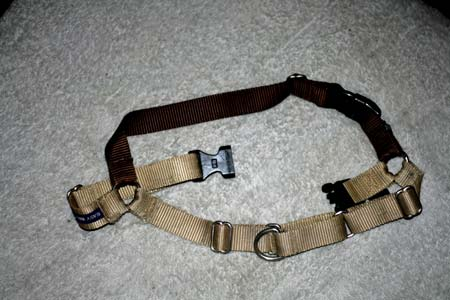 How to put on the easy walk harness