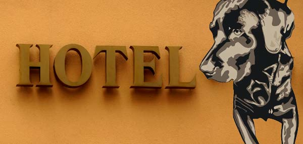 Pet Friendly Hotels Philadelphia: Hotels That Allow Dogs