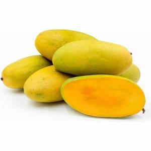 mango doseheri