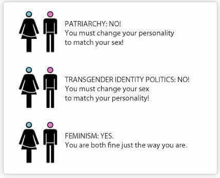 Geneder dysphoria & feminism - FairPlayForWomen.com