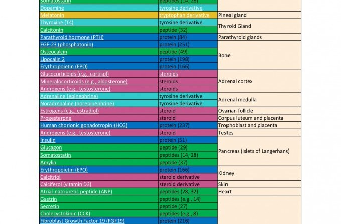 thumbnail of hormone-table-60