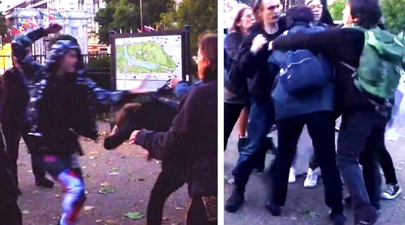 Transactivist Violence at Speaker's Corner, London - FairPlayForWomen.com