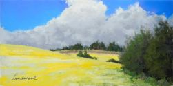 """6""""x12"""" pastel plein air painting of canola field, trees, house, clouds, in Banks, Oregon"""