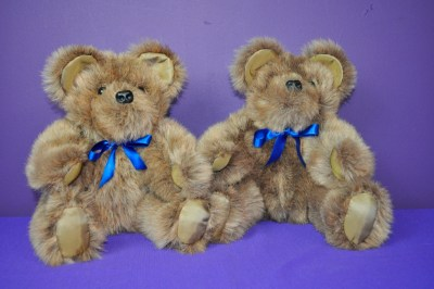 AugensteinJ bears