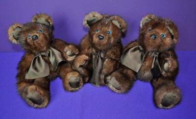 BurnsC bears