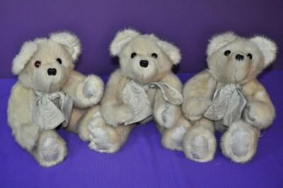 HartleyW bears