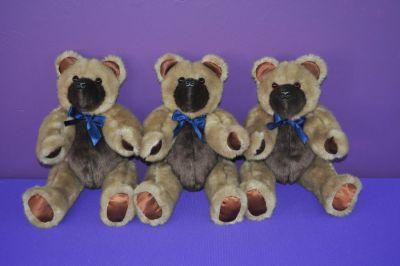 HoustonK bears
