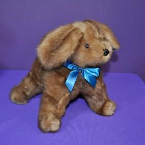 Kerlinh puppy01