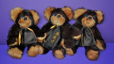 OotS bears