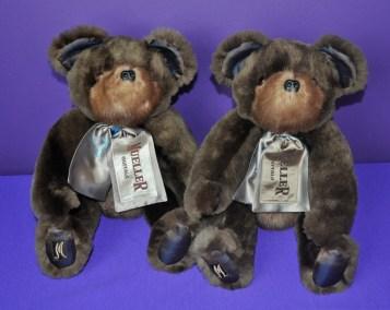 ParsonsL bears
