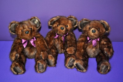 SchaecherI bears2
