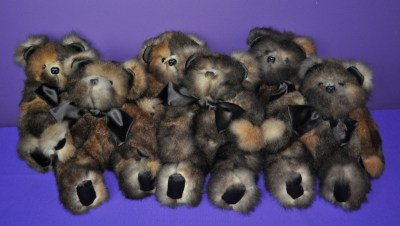 WyckoffL bears