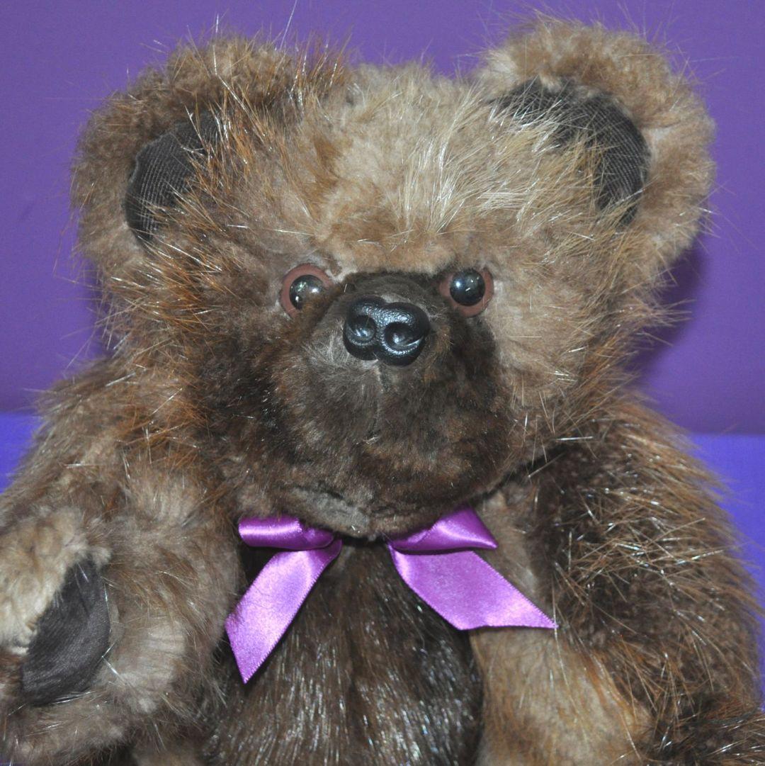 Andy Raccoon Bear 02