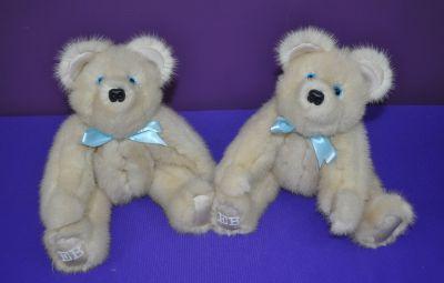 AlgeoC bears