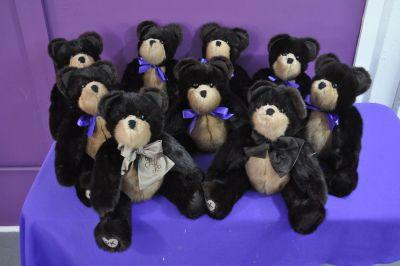 CarpenterS bears