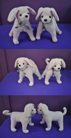 WernerD dogs