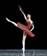 Svetlana Zakharova em Dom Quixote