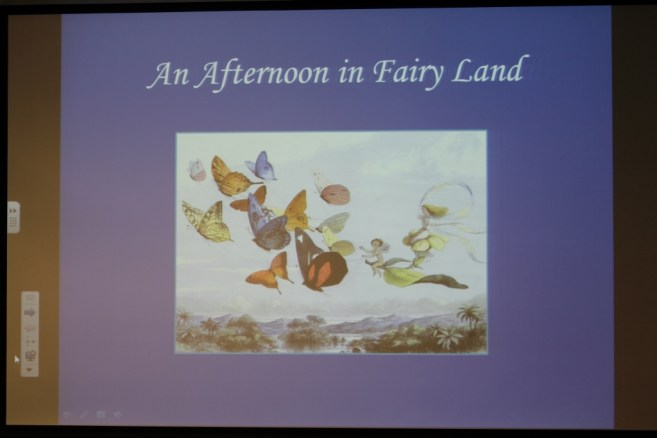 An Afternoon in Fairy Land