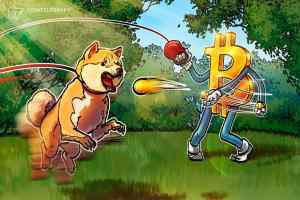 Read more about the article Dogecoin loses 70% against Bitcoin during 6 months of celebrity DOGE endorsements