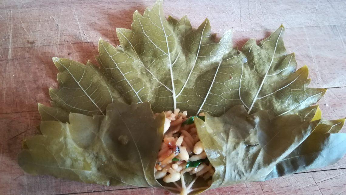farcir des feuilles de vigne