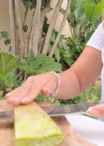 extraction du gel d'aloe vera pour faire un thé glacé