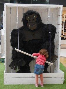 Gorille - Samuel Stento