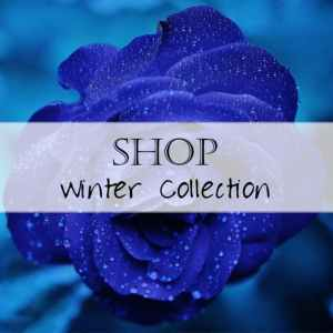 Seasonal: Winter Collection