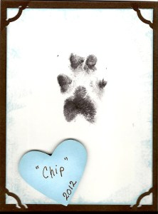 Chip's Paw Print