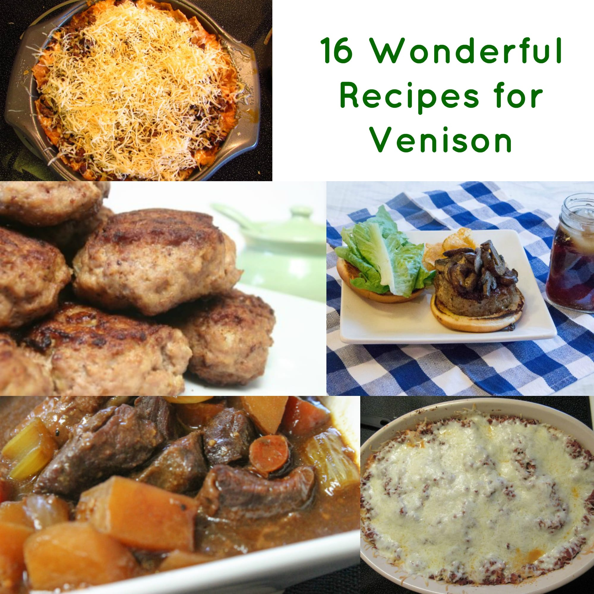 16 Wonderful Venison Recipes to Fill Your Tummy