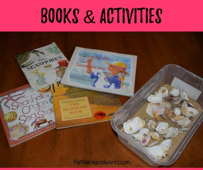 seashore books & activities