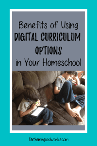 digital curriculum options