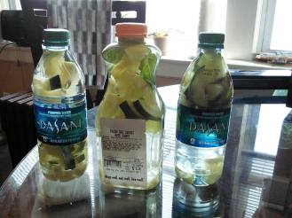 Homemade infused water