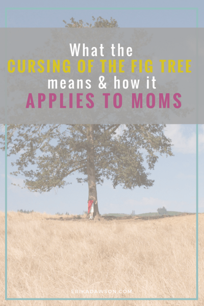 Leaves or Fruit? How the Cursing of the fig tree applies to moms
