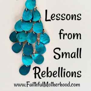 Lessons from Small Rebellions