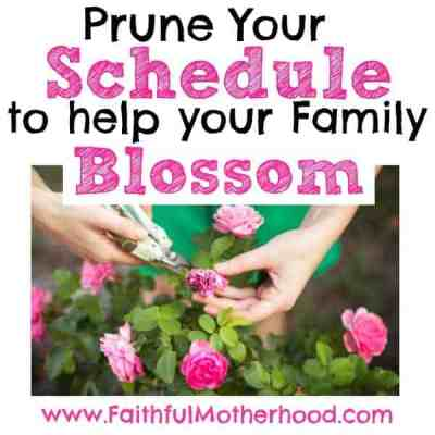 Prune Your Schedule to Help Your Family Blossom