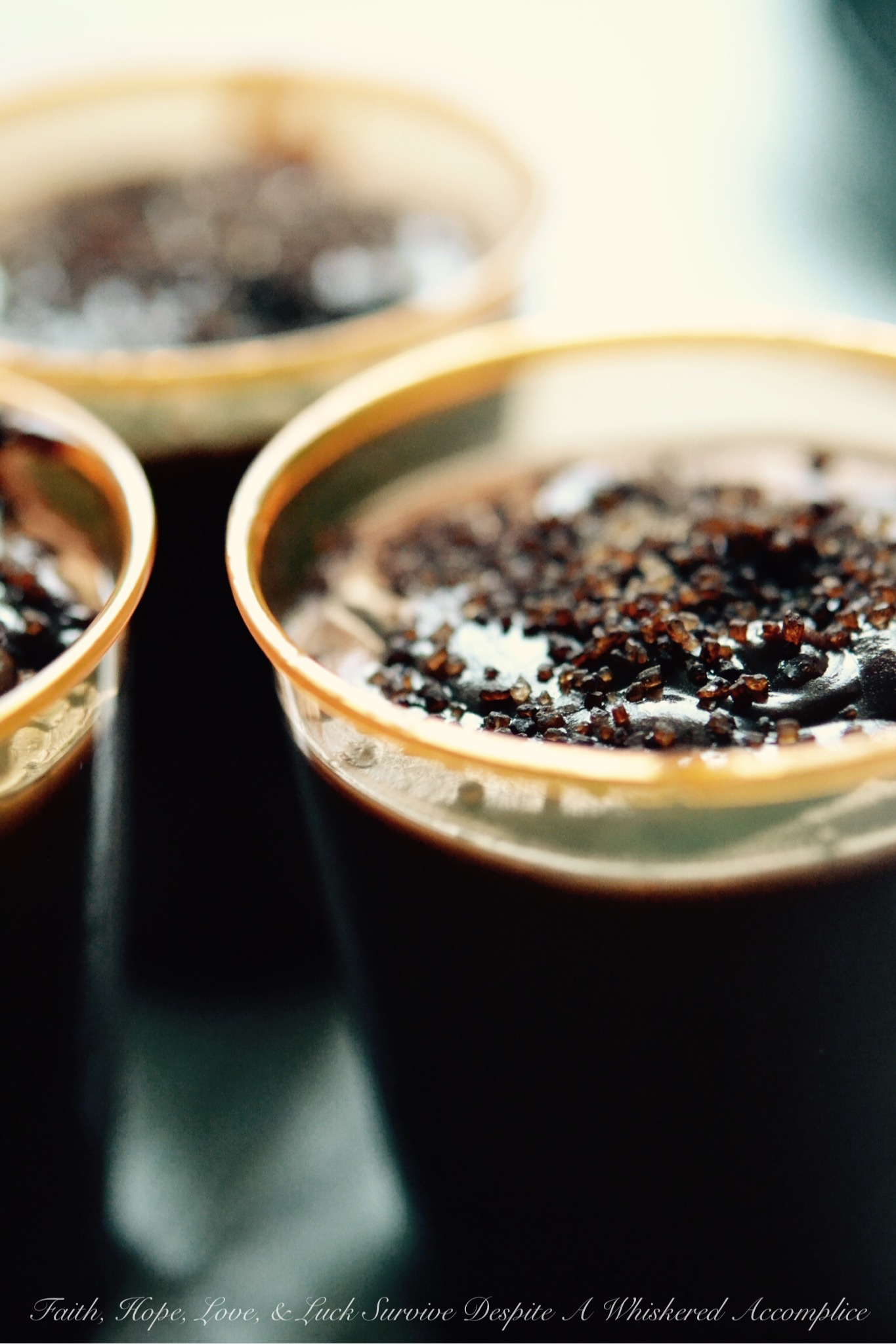 Chocolate Pudding Shots – Faith, Hope, Love, & Luck Survive ...
