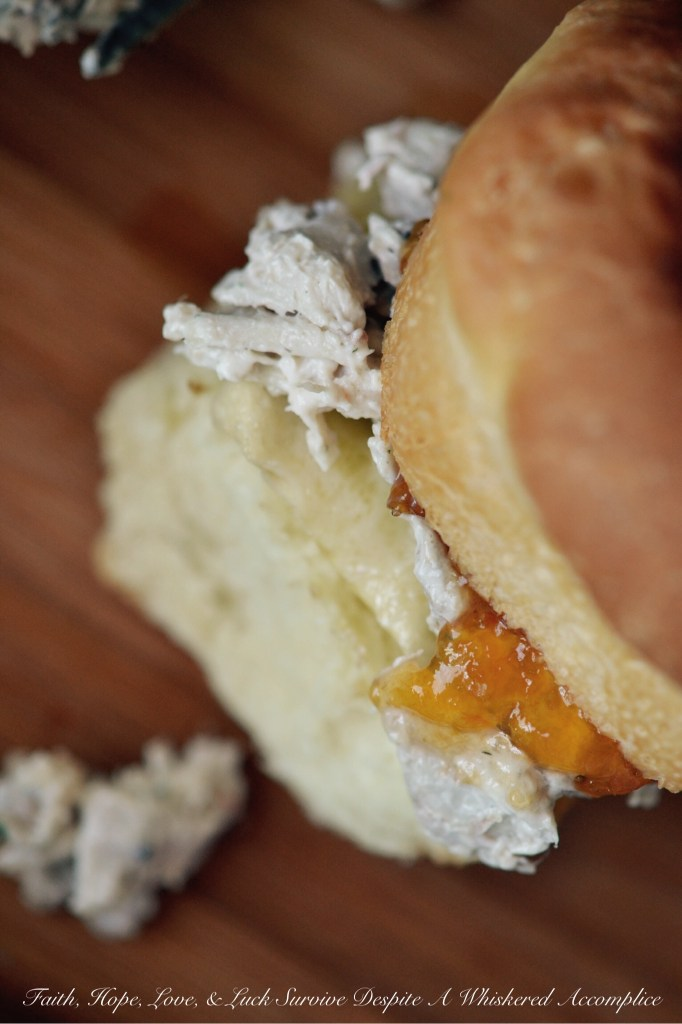 Thanksgiving Brie and Apricot Preserves Sandwich | Faith, Hope, Love, and Luck Survive Despite a Whiskered Accomplice