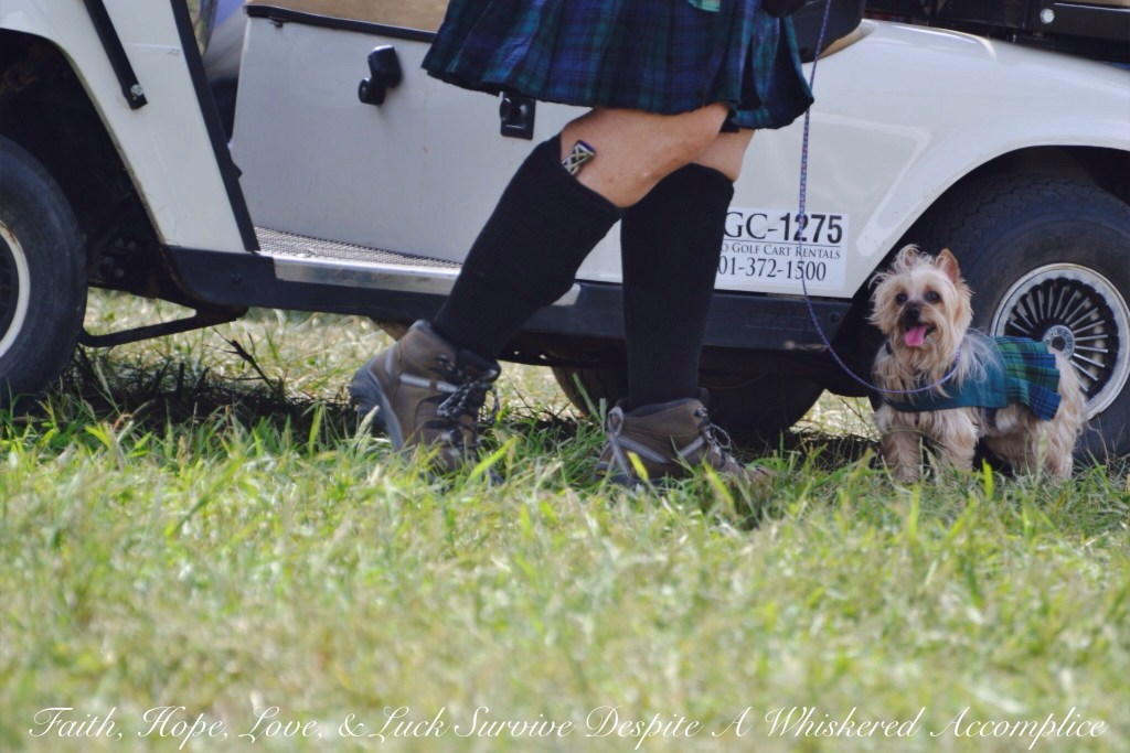 Kilts for Cats? | Faith, Hope, Love, and Luck Survive Despite a Whiskered Accomplice
