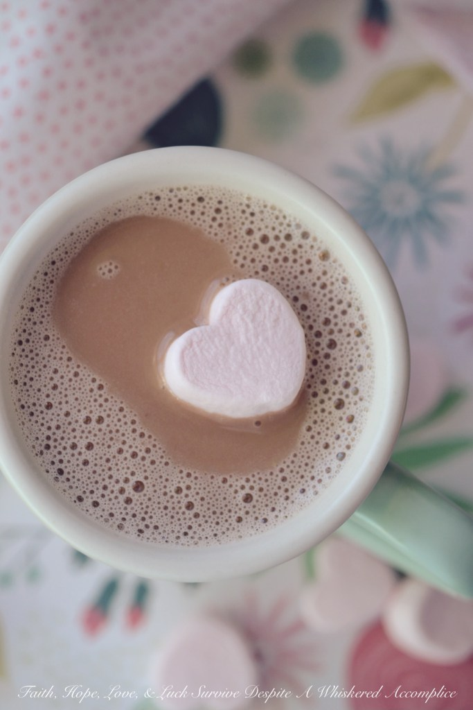 Strawberries and Cream Hot Chocolate | Faith, Hope, Love, and Luck Survive Despite a Whiskered Accomplice