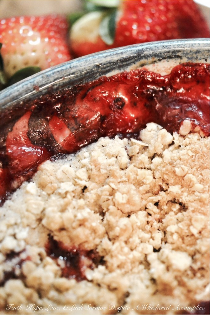 Strawberry Vanilla Oat Crumble | Faith, Hope, Love, and Luck Survive Despite a Whiskered Accomplice